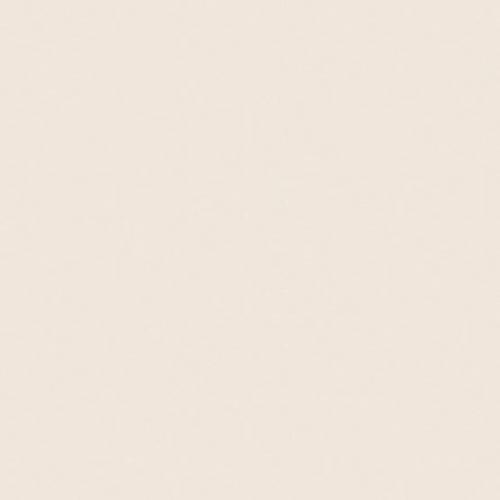 Piso Brilhante Absolut Cream Bege 60x60