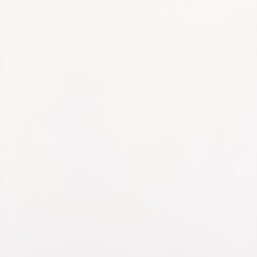 Porcelanato Retificado Esmaltado Polar Lux HD A 62,5x62,5 - Elizabeth