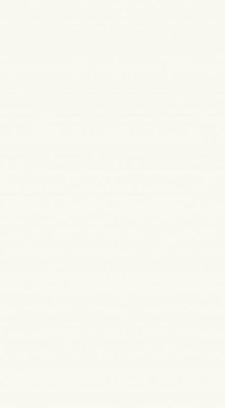 Revestimento Monoporoso Retificado Tradizionale Bianco 32x60 Comercial - Biancogres